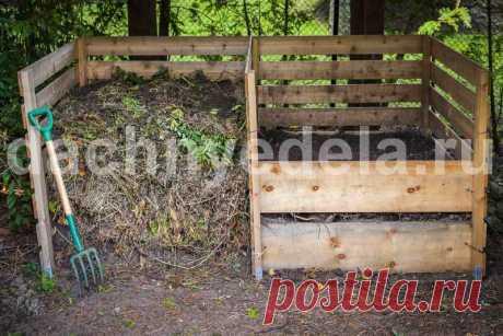Компост, который сам растет и сам рыхлит   Идеальный огород   Яндекс Дзен