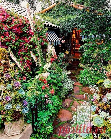 Las ideas interesantes su jardín — la elección de las recomendaciones.