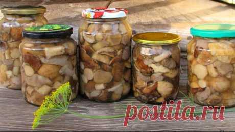 Ловите, хозяюшки! Маринад для любых грибов Простой маринад для консервации любых грибов. Хрустящие, аппетитные грибочки всегда будут востребованы за столом.