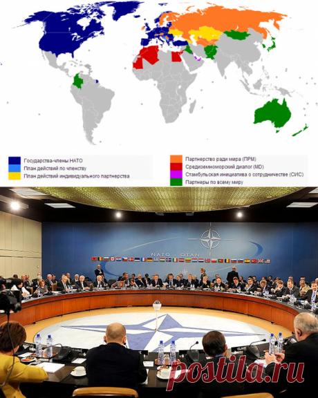 В чём заключалось сотрудничество России и НАТО и почему оно приостановлено? | Справка | Вопрос-Ответ | Аргументы и Факты