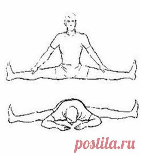Опробовала японскую гимнастику и теперь делаю её каждый день. Макко хо для суставов ног и позвоночника | health & beauty | Яндекс Дзен