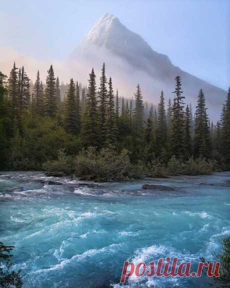 Утро на реке Робсон, Канада