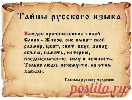 Екатерина Шлёмина | Facebook