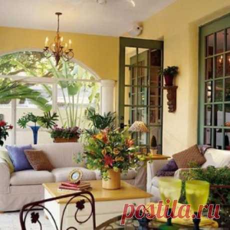 15 лучших растений для каждой комнаты в вашем доме. - МирТесен