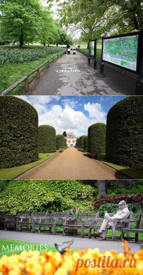 Лондонские парки и сады | VeniVidi.ru