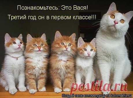 Блоги@Mail.Ru