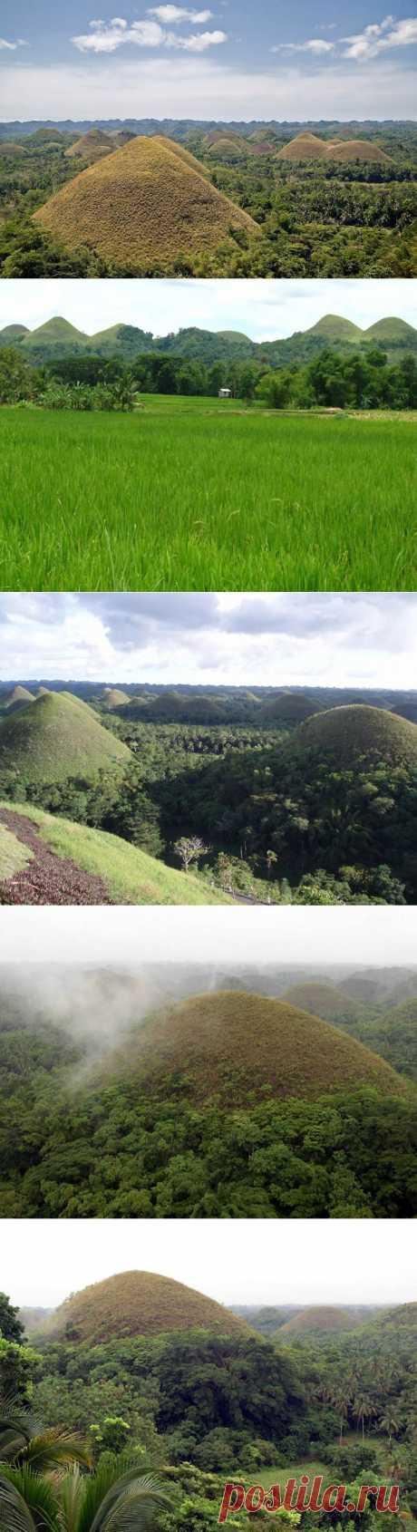 """""""Шоколадные"""" холмы. Филиппины   ТУРИЗМ И ОТДЫХ"""