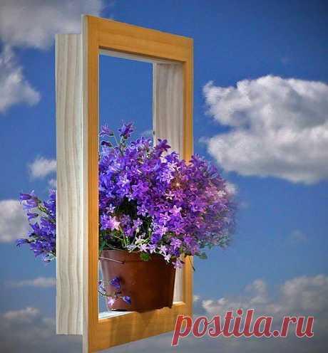 Чужая жизнь,как чужие окна.Даже если на подокойнике стоят цветы, - это не значит,что внутри рай.