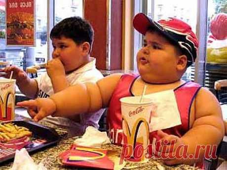 что мы едим и кормим наших детей