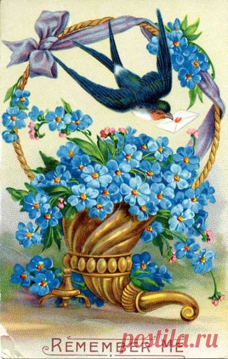 forget me not -- beautiful vintage image, with letter being delivered by the Bluebird of Happiness.... | Blomster billeder mm | Vintage images, For…
