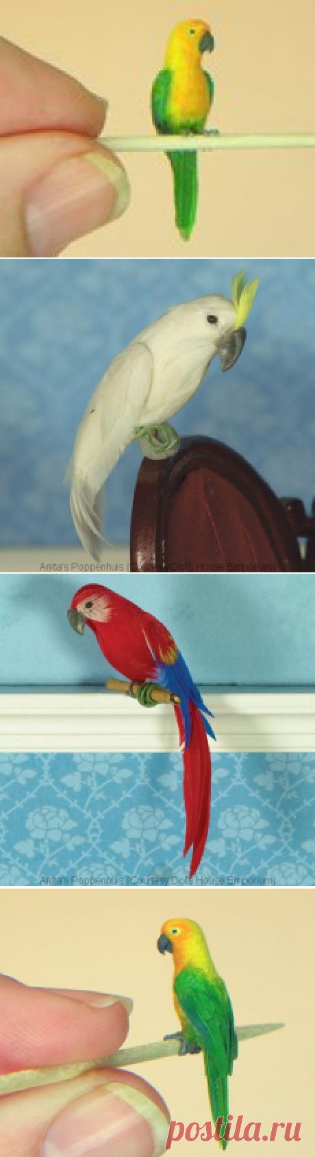 Как сделать миниатюрного попугая Мастер класс