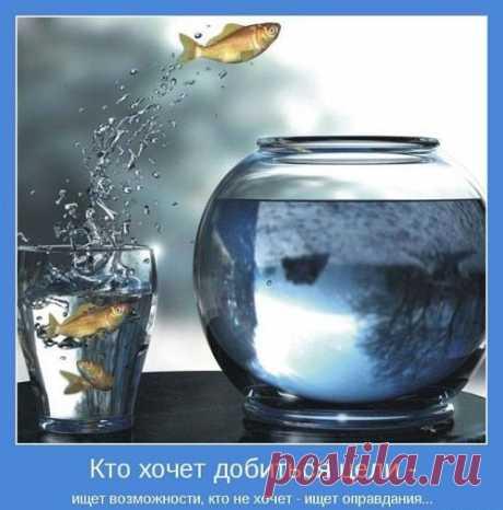 1585393892_33.jpg (500×506)