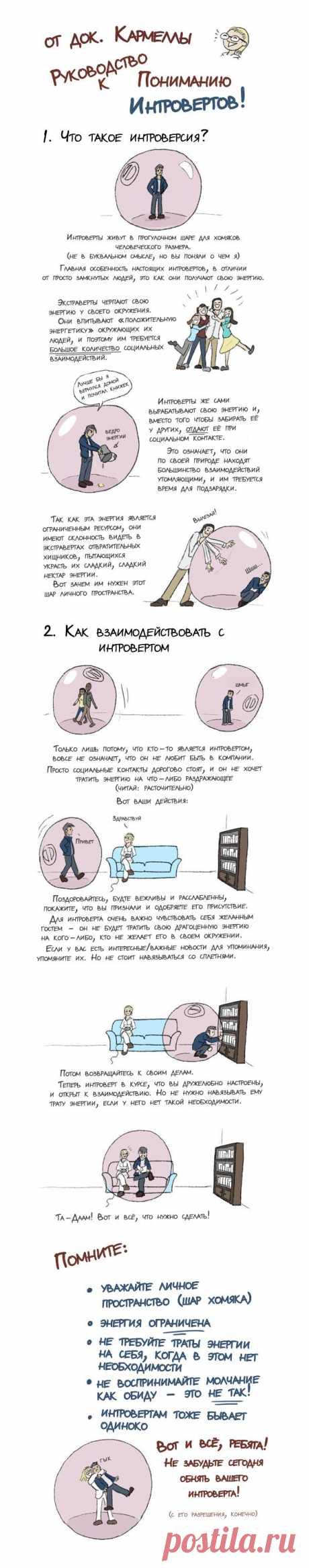 ИНФОГРАФИКА: Руководство к пониманию интровертов | Лайфхакер