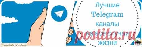 Лучшие Telegram каналы на все случаи жизни