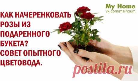 МОЙ ДОМ! | ВКонтакте