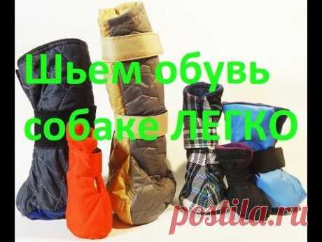 Шьем Обувь для Собак Быстро и Легко. Розыгрыш Одежды и Обуви для Собак.