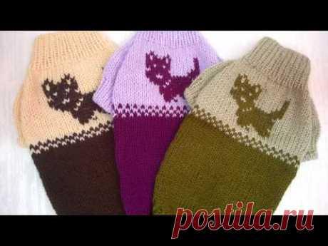 4. Вязаные свитера для йорков, чихуахуа, тойтерьеров