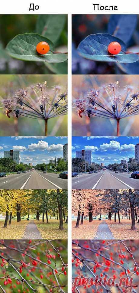 Ищем цветовой вариант для колоризации фото / Photoshop уроки и всё для фотошоп - новые уроки каждый день!