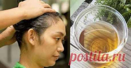 Сильно выпадают волосы? — Лепрекон