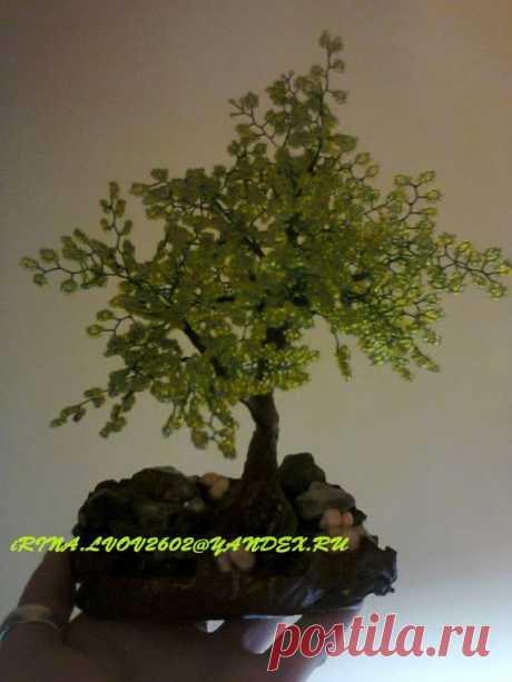 Дерево из бисера / Деревья из бисера: схемы, мастер классы / PassionForum - мастер-классы по рукоделию