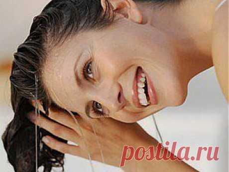 Жирные волосы: причина и народные способы устранения