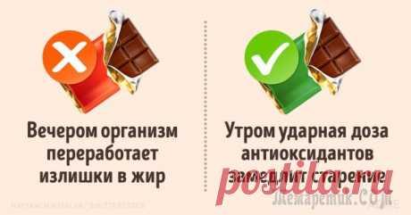 В какое время дня лучше есть те или иные продукты