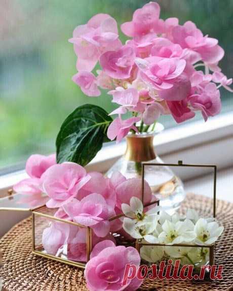 С добрым утром друзья! Пусть солнце к Вам заглянет в дом, И на душе вдруг станет легче. Начните этот день с добром. Пусть нежность ляжет Вам на плечи.