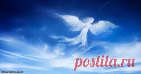 Если ваш ангел хочет вас предупредить, он посылает вам 1 из этих 5 сигналов Ангелы оберегают и направляют нас. Это божественные создания любви и света, которые помогают людям в жизни.      У каждого человека имеются свои уникальные ангелы-хранители. У кого-то один ангел, а у…
