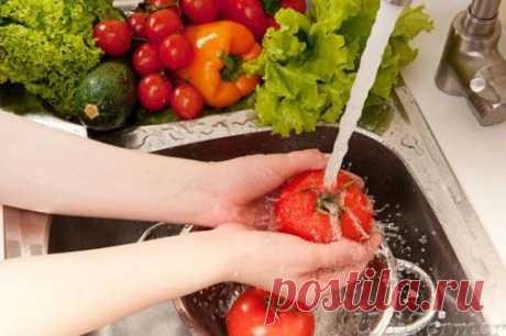 LOS PARÁSITOS EN HORTALIZAS Y LAS FRUTAS.\u000d\u000a¡Los parásitos en hortalizas mal lavadas, las frutas, la verdura - una de las vías del contagio!