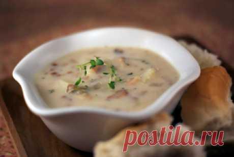 Как приготовить суп клэм чаудер. Клэм чаудер – вкуснейшее блюдо американской кухни, неизменными компонентами которого являются моллюски, сливки, бекон, картофель и репчатый лук. Можно сказать, что классического варианта приготовления данного супа просто не существует, потому что даже в каждом штате самой Америки готовят его по-разному (не говоря уж о том, что в мировой кулинарии это кушанье имеет несколько десятков разнообразных рецептов).