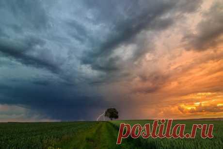 «Одиночество». Автор фото — Islamov Saykhan: nat-geo.ru/photo/user/299828/ Добрых снов.