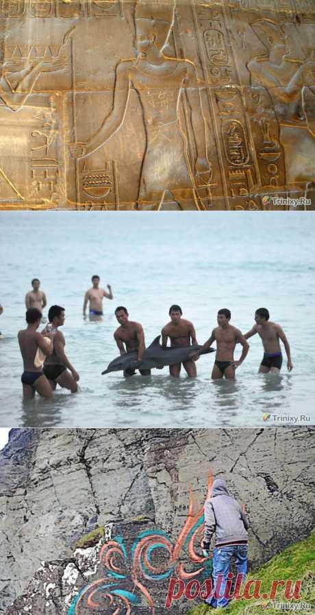 Худшие в мире туристы (5 фото + текст) » Триникси