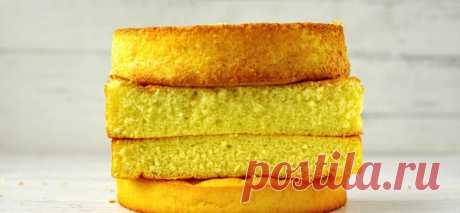 Урок 1. Простой ПП бисквит - Бесплатная Школа ПП