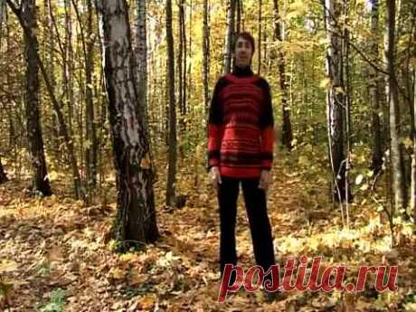 УПР№9--МАЯТНИК ГОЛОВОЙ--Дыхательная гимнастика Стрельниковой от всех болезней | Bodymaster О спорте и фитнесе | Яндекс Дзен