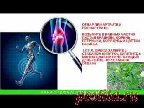 Аюрведические средства для похудения | Методы лечения заболеваний