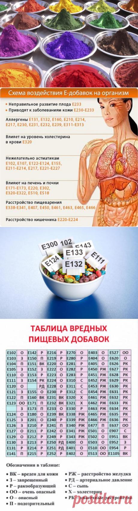Вредные Е-добавки: как они влияют на здоровье человека? Список самых опасных добавок