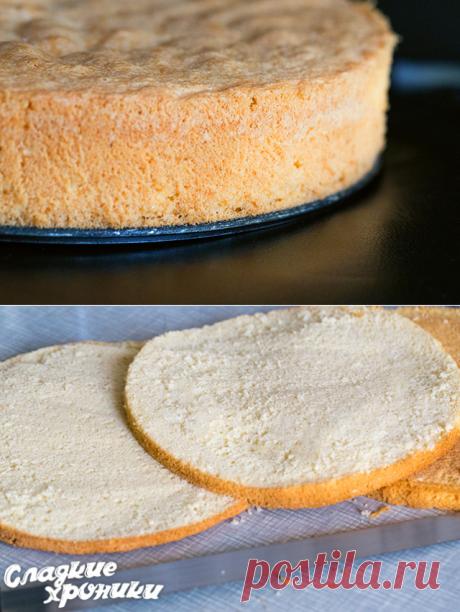 Пышный и простой бисквит для торта: 3 рецепта с фото пошагово в домашних условиях - Сладкие хроники