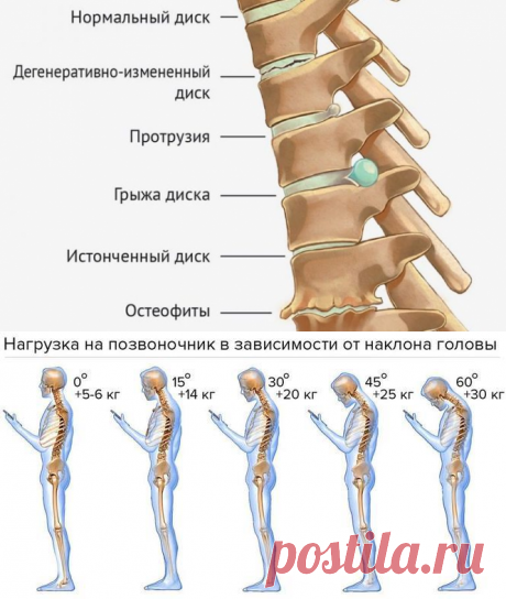 Гибкость и благополучие позвоночника! Гимнастика Мирзакарима Норбекова | Всегда в форме!