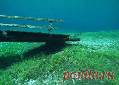 Необычное зеленое озеро / Speleologov.Net - мир кейвинга