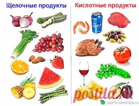 Полезные и вредные продукты. Системы питания В.Караваева и Б.Болотова.