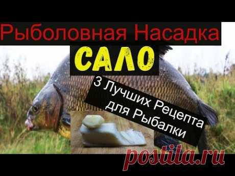 Супер Рыболовная Насадка -САЛО- 3 ЛУЧШИХ РЕЦЕПТА ДЛЯ РЫБАЛКИ. bait for carp.bait for bream.