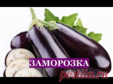 Freezing of EGGPLANTS for the winter. Three checked ways!!!