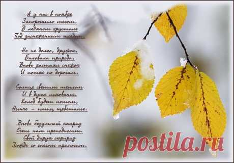 Любовь Павлова - на Мой Мир@Mail.ru