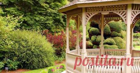 Беседка на участке: как выбрать место, из чего строить и что посадить рядом Установите беседку, и у вас сразу появится больше времени для отдыха от садово-огородных забот.