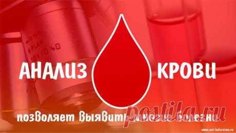 Анализ крови: 18 тестов, которые опишут истинное состояние здоровья — Net-Bolezniam.Ru