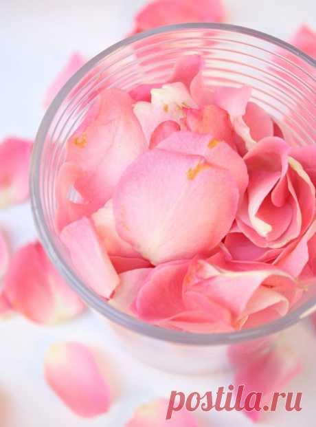 Крем с розовой водой - Красота и здоровье Размягчить воск с маслом. Параллельно нагреть воду, в которой полностью растворить буру. Обе емкости снять и перемешать их содержимое. Добавить розовую воду и продолжать размешивать, пока не образуется белый крем. Переложить его в чистые баночки и поставить в холодильник.