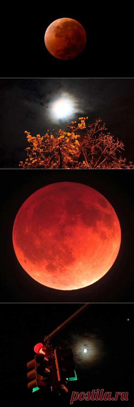GISMETEO.RU:  Драматичный небесный спектакль. Первое полное лунное затмение 2014 года вызвало большой интерес не только в научной среде, но и у обычных людей. Вошедшая в земную тень полная Луна обрела красноватый оттенок.