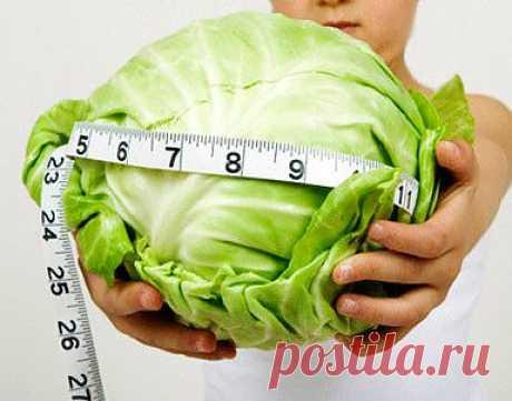 Капустная диета + рецепт супа для похудения.