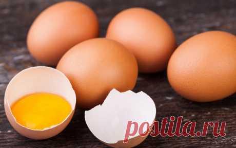 7 продуктов для хорошего зрения | Полезно (Огород.ru)