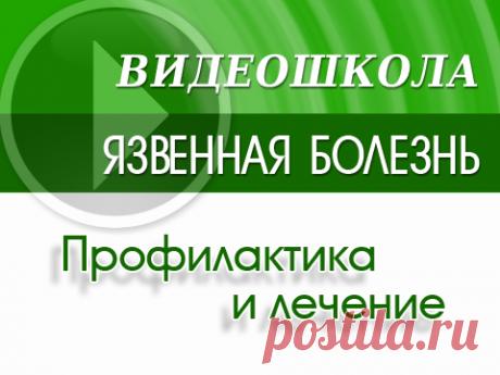 """Новая видеошкола """"Язвенная болезнь желудка и двенадцатиперстной кишки""""   Примафлора"""